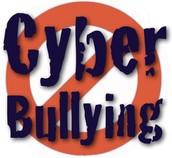 Rule#5: Cyberbully