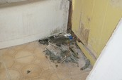 Water damage and holes through floors