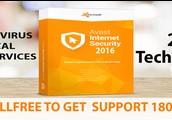Avast Pro Antivirus Technical Supports Providers
