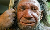 What a neanderthal is thought to have looked like