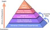 Effect on Children