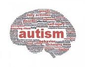 autistic adjective brain