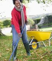 Raking the elderly or injured's lawn