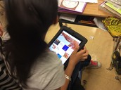 Animoto Poems about Food Chains