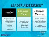Leader Assessment