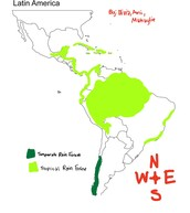 Rainforests in South America map:
