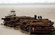 Logger going to a place to deliver logs by boat