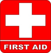 First Aid (falls, choking, cuts, burns, poisoning)