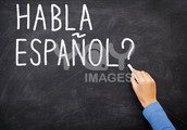 You will learn or improve your reading, writing and conversational skills in Spanish