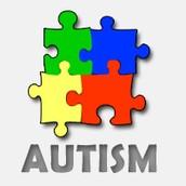 Puzzle Piece Project & Lessons