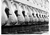 La fontana del Calamo