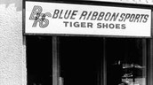 The old Nike, Blue Ribbon sports.