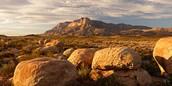 """""""Guadalupe Peak"""""""