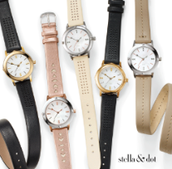 Icon Reversible Watches