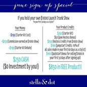 BECOME A STYLIST FOR FREE THIS MONTH!