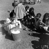 Distribution of Milk