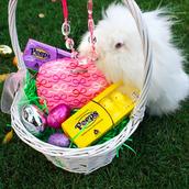 Great Easter Basket Gift