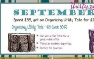 $15 Organizing Utility Tote