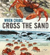 The Christmas Island Crabs & More