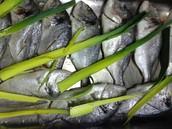 Pratos de Peixe, Carne e Vegetariano