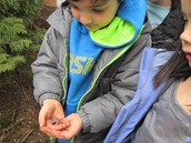 Nico finding worms in soft soil.