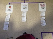 Thinking Maps Artifact