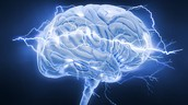 Learning and the Teen Brain