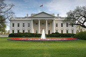 What are the responsibilities of the Executive Branch