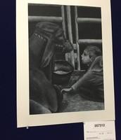 Rodeo Art Exhibit