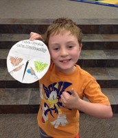2nd Grade Lesson: Life cycle of a Butterfly