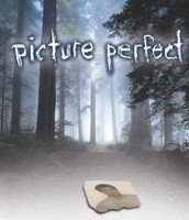 Picture Perfect By: Elaine Marie Alphin