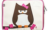Papar Owl ipad case