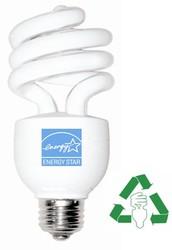 Energy Star CFL lightbulb.