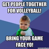 Section Volleyball