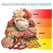 Meat & Poultrey: Risk Pyramid