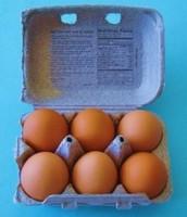 Egg Carton Array