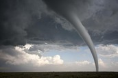 What do Tornado's look like?