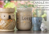 Candles and Candle Warmers