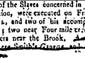 Article describing the fate of the convicted slaves