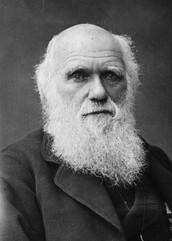 Who is Darwin?