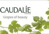 Caudalie(moisturizer)