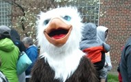 WE Eagle