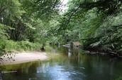 Ellis River