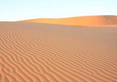 The Nambib desert