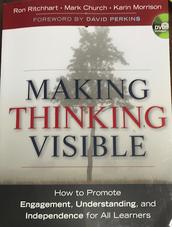 Why make thinking visible?
