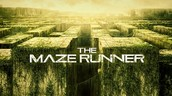 Where is the setting of the maze runner and why it is important