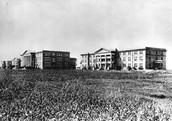 TCU History