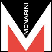 The Menarini Group