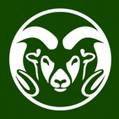 #2 Colorado State University of Fort-Collins