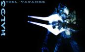 The Arbiter Thel 'Vadam